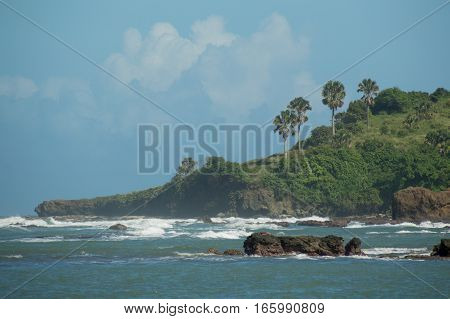 White waves crash into the rocks and cliffs in the Dominican. The hillside is covered in green plants and palm trees. A big white cumulus cloud in the blue sky.