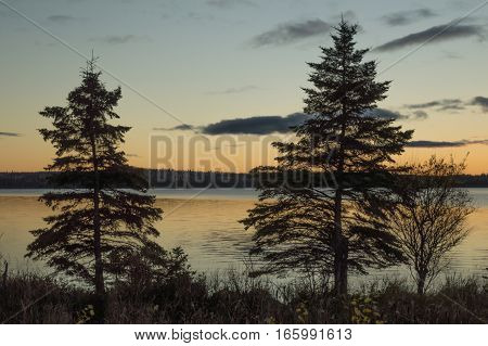 Sky is yellow with dark grey clouds and the trees are amost black silhouettes. Northern Ontario lake