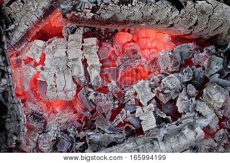 A glowing red-hot firewood and an ash