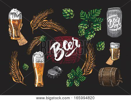 Colored beer elements set with wheat can hop cap barrel and hand holding glass isolated vector illustration