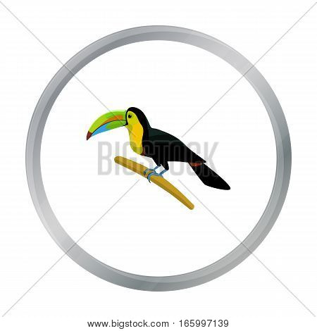 Mexican keel-billed toucan icon in cartoon style isolated on white background. Mexico country symbol vector illustration. - stock vector