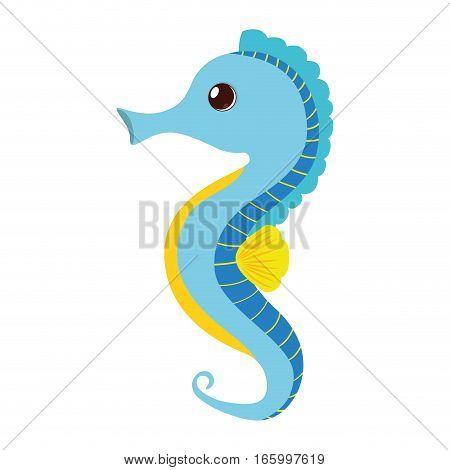 blue sea horse pet aquarium vector illustration eps 10
