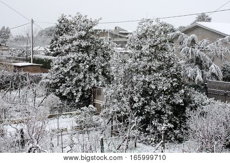 Scenery of garden full of snow while snowing.