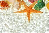 Seashells and white pebbles isolated on white poster