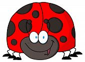 Happy Red And Black Ladybug Cartoon Character poster