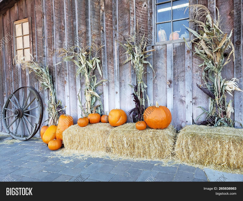 Autumn Decorative Image Photo Free Trial Bigstock