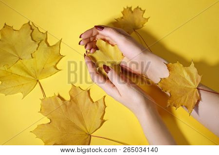Fashion Art Hand Woman In Autumn Time And Leaves On Her Hand With Bright Contrasting Makeup. Creativ