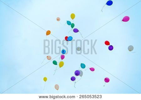 Colorful Balloons Filled With Helium Rise Into The Blue Sky