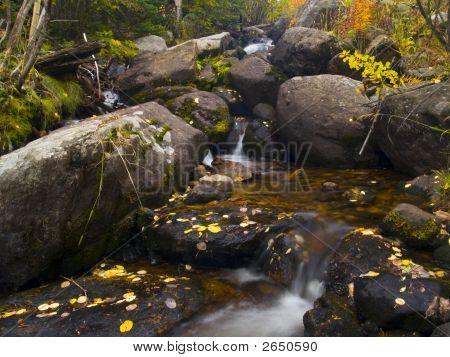 Mill Creek Autumn
