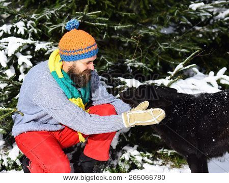 Friendship And Allegiance Concept. Man Wears Knitted Hat, Scarf