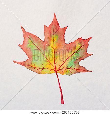 Watercolor autumn leaf. Fall foliage. Autumnal design. Seasonal decorative beautiful multi-colored drawing leaf. Original artwork.