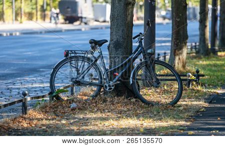 Healthy lifestyle concept. Bicycle is parked and locked for security on a tree. Blur background.