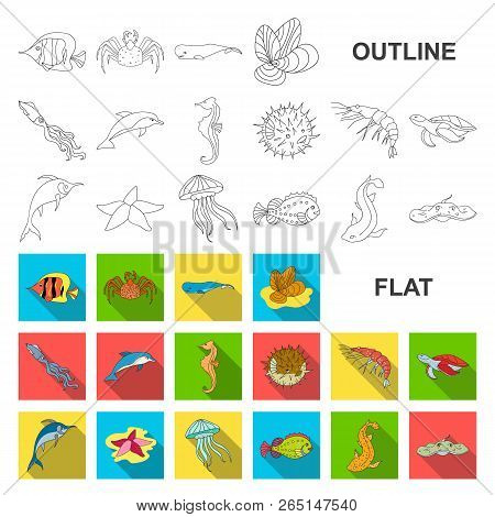 A variety of marine animals flat icons in set collection for design. Fish and shellfish vector symbol stock web illustration. poster
