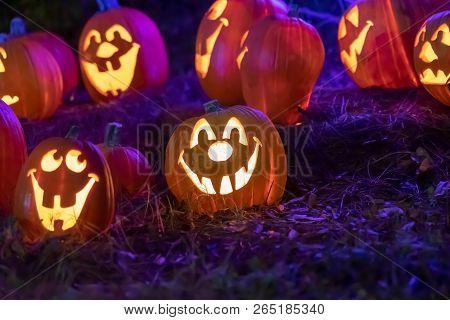 Halloween Pumpkin Smiling In Large Pumpkin Patch For Halloween