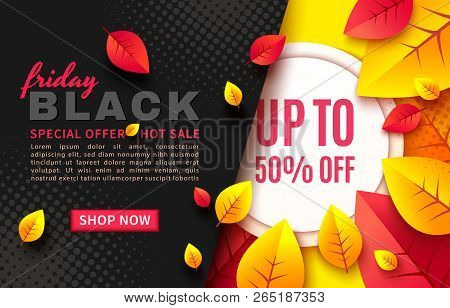 Black Friday Sale Vector Promotion Banner With Colorful Leaves. Fall Season, Flyer Template For Holi
