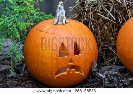 Carved Frowing Pumpkin Sitting In Front Of Hay Bail.