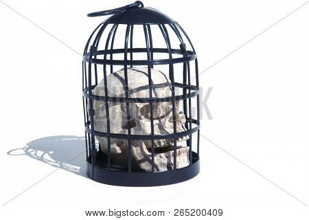 Halloween Skull in a Metal Torture Bird Cage. Isolated on white. Room for text. Medieval Torture Device with a Human Skull inside.   poster