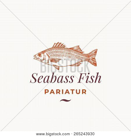 Seabass Fish Abstract Vector Sign, Symbol Or Logo Template. Hand Drawn Sea Bass Sketch With Classy R