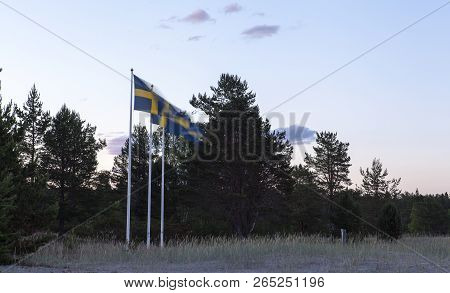 Sweden, Swedish Flags, Nightfall And A Beach. Windy Evening. Reed And Trees.