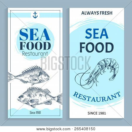 Best Quality Seafood Restaurant Hand Drawn Banner With Anchor Symbol. Bream And Shrimp Marine Produc
