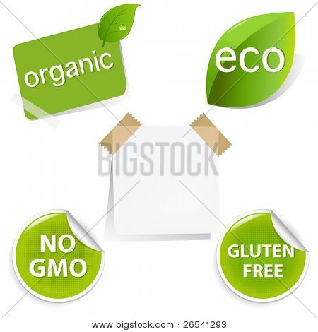 Eco Labels Set, Isolated On White Background, Vector Illustration