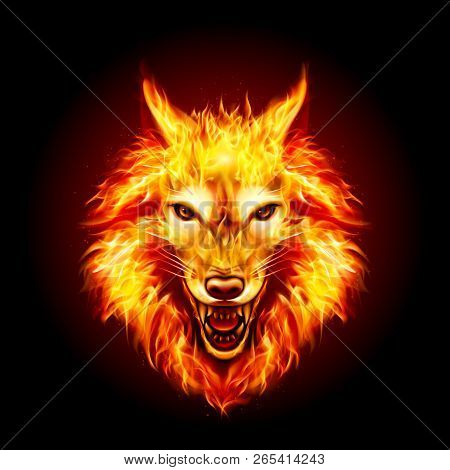 Head Of Aggressive Fire Woolf. Concept Image Of A Red Wolf And Flame On A Black Background
