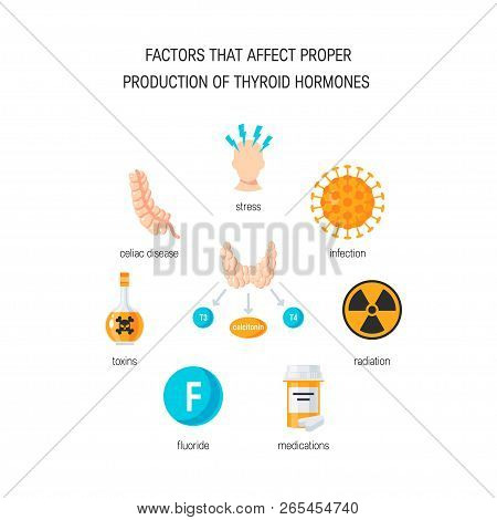 Factors That Affect Proper Thyroid Hormones. Vector Medical Illustration In Flat Style
