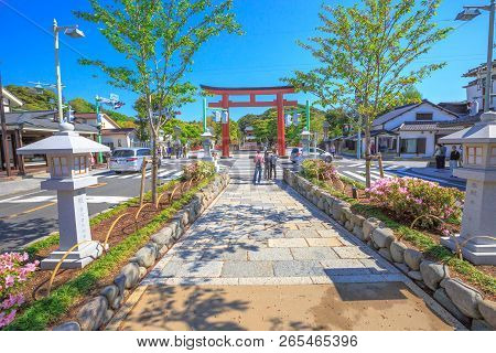 Kamakura, Japan - April 23, 2017: After Torii Gate In Dankazura Pathway With Cherry Trees To Tsuruga