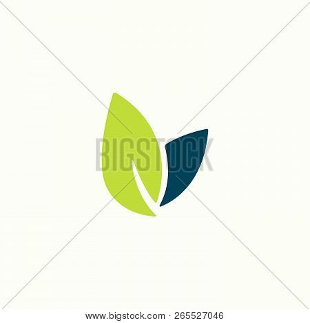 Icon Vector Leaf. Eco Nature Healthy Concept. Green Natural Plant Symbol. Logo Sign Design. Element