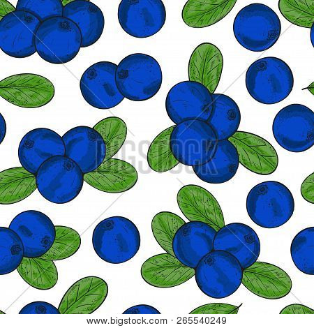 Blueberry. Berries, Leaves. Background, Wallpaper, Texture, Seamless. Color