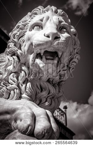 Statue Of A Lion, Black In White. Classical Marble Lion Sculpture Close-up. Face Of A Ferocious Lion