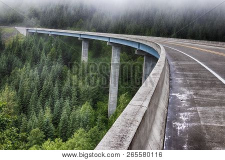 Concrete Forest Bridge Freeway Road With Fog