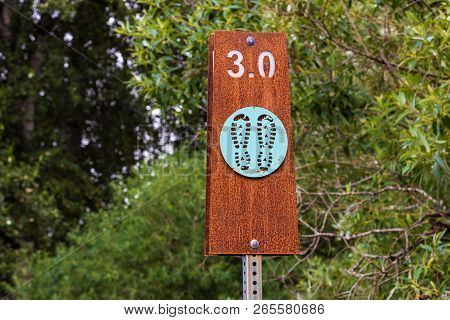 Hiking Trail Sign Post With Trees And Rust