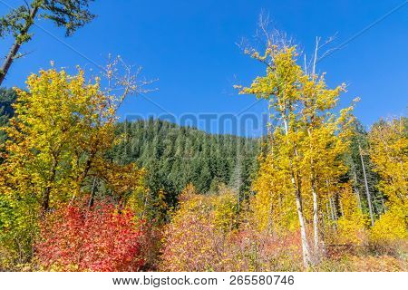 Generic outdoor views of the Oregon coastline