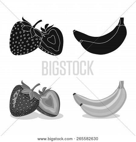 Vector Design Of Vegetable And Fruit Sign. Set Of Vegetable And Vegetarian Stock Symbol For Web.