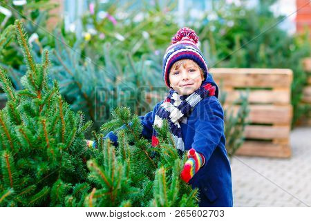 Adorable Little Smiling Kid Boy Holding Christmas Tree On Market. Happy Healthy Child In Winter Fash
