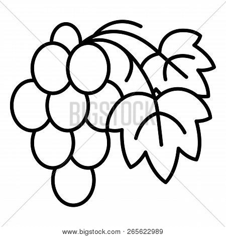 Cabernet Grape Icon. Outline Cabernet Grape Vector Icon For Web Design Isolated On White Background
