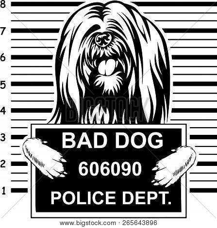 Animal Dog Lhasa Apso 5T6Yfv Head.eps