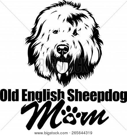 Animal Dog Old English Sheepdog 5T6Y Mom.eps