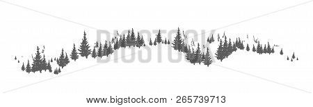 Horizon Line With Hand Drawn Silhouettes Of Coniferous Trees Growing On Hills Or Mountains. Forest P