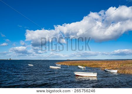 Boats And Reeds On The Baltic Sea In Denmark.