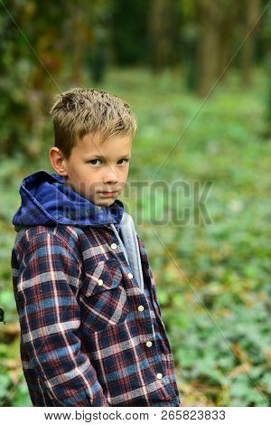 A Perfect Day For Camping. Little Boy Gone Camping In Woods. Little Boy Hiking In Autumn Forest. Enj