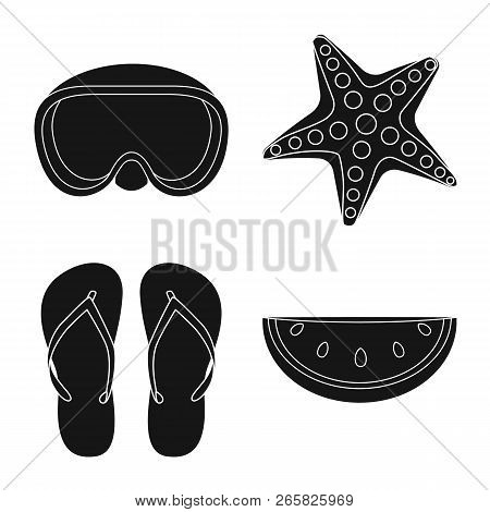 Isolated Object Of Equipment And Swimming Symbol. Set Of Equipment And Activity Stock Vector Illustr