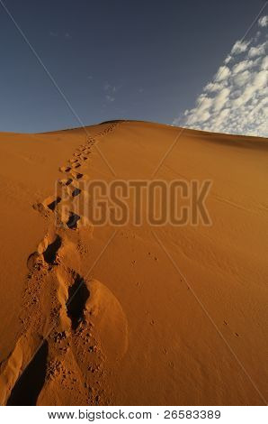 Footprints Of One Person In Desert Sand Dune