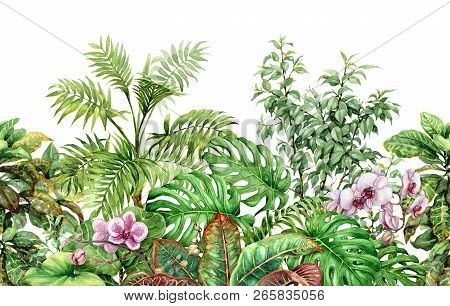 Hand Drawn Flowers And Leaves Of Tropical Plants. Seamless Line Horizontal Pattern Made With Waterco
