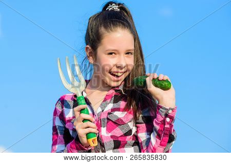 Kid Cheerful Gardener Holds Rake And Cucumber Blue Sky Background. Girl Gardener With Hand Rake. Gar