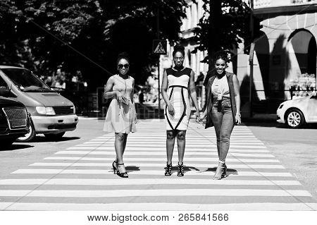 Three Stylish African American Womans Walking On Crosswalk Or Pedestrian Crossing, Speaking Each Oth