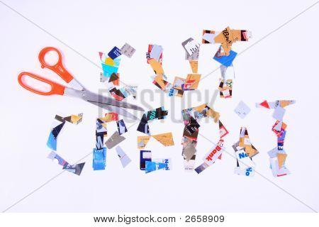 Cut Credit Cards