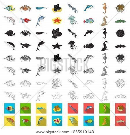 A variety of marine animals cartoon icons in set collection for design. Fish and shellfish vector symbol stock web illustration. poster