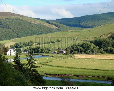 Tweed Valley Landscape